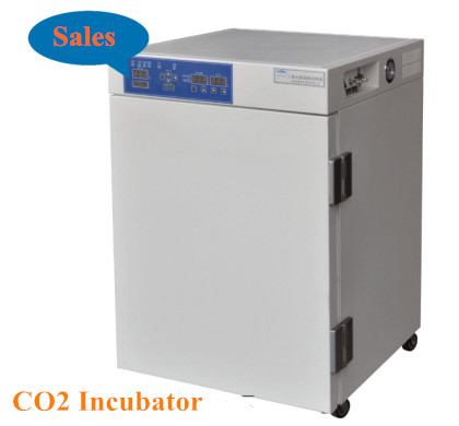 BIOBASE Air or Water nested CO2 incubator with UV Lamp