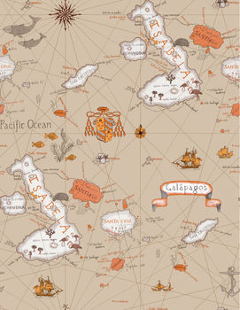 C11202 kids world map interior wallpaper catalogue buy interior c11202 kids world map interior wallpaper catalogue gumiabroncs Images