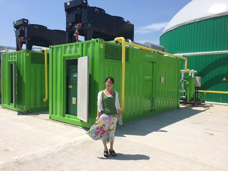Ce And Iso Approved Bio Gas Power Plant / Biogas Plant / Biogas ...