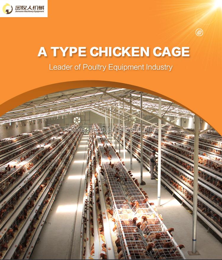 Jinmuren aves de corral de cría de equipo capa de jaula de pollo para Zimbabwe mercado
