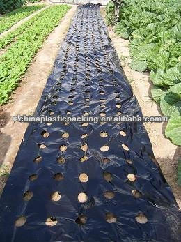 Wholesale Agriculture Black Mulch Film With Perforated