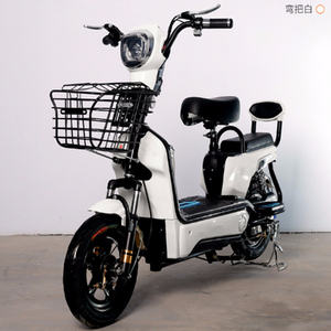 electric bicycle with sidecar electric bicycle brushless controller  electric bicycle female