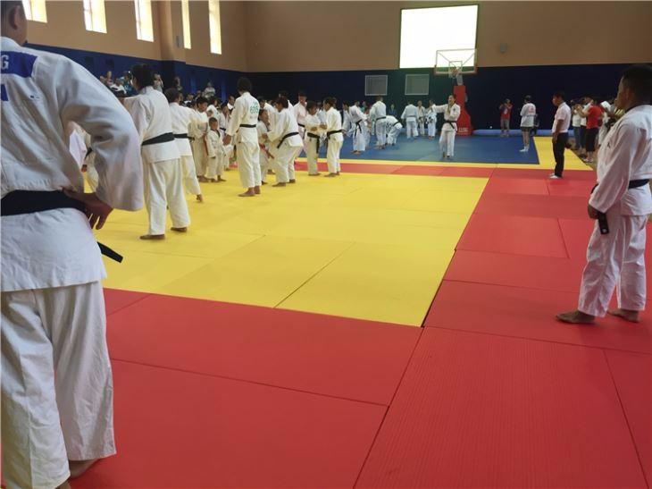 Bjj PU sponge soft material wrestling training judo foam tatami mat