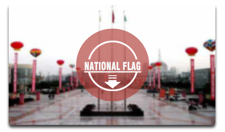National Car Flag Polyester Printed Car Decoration Flying Advertising mini Flag Banner