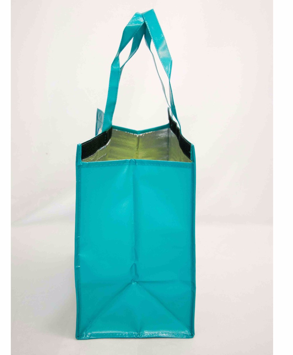Китай лучшие продажи ламинированные Нетканая большая сумка- холодильник
