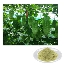 Taiwan Supplier Product of herbal weight loss Balsam Pear Powder