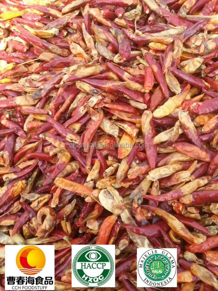 Chilli Manufacturer company supplying Grade B Dried Chilli Yellow and Red Chilli with HACCP , HALAL certificates