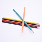 High Quality Plastic Color Pencil Set of 12 Painting Pencil Children's Christmas gift