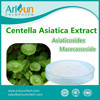 10%-95% Centella Asiatica Extract Powder Total Triterpenes