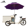 3 wheel solar energy mobile Ice Cream Bike Bicycle cartTricycle with battery freezer for sale