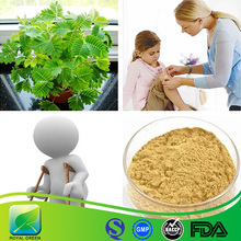 Mimosa hostilis root bark/mimosa pudica/mimosa hostilis root bark powder