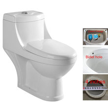 High quality and good price sanindusa ecological bidet toilet germany
