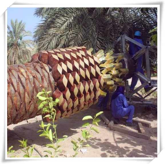 Simulation Canary Date Palm Tree Man-made Tree Fake Phonix PalmTree