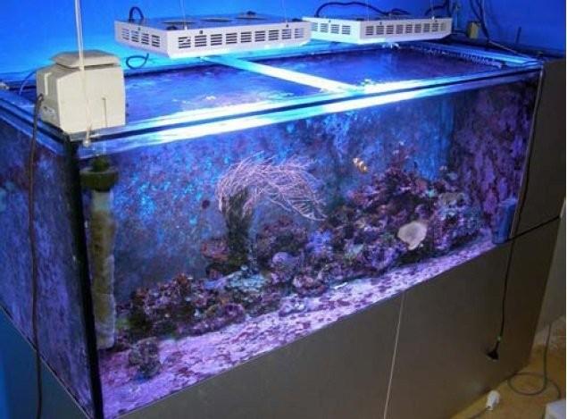 Non Waterproof Hanging Aquarium Led Light Reef Plant Lighting Led ...