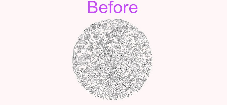 Secret Garden Adult Coloring Book Adults Drawing Books For Wholesale