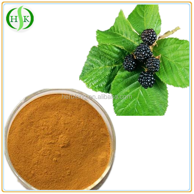 2016 wholesales with best quality organic dried mulberry leaves