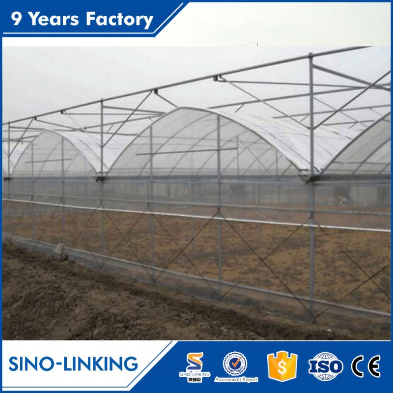 Nice polytunnel hot sale vegetable production greenhouses china for tomato