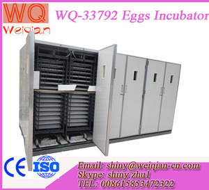 WQ-33792 solar eggs incubator large size poultry incubator machine