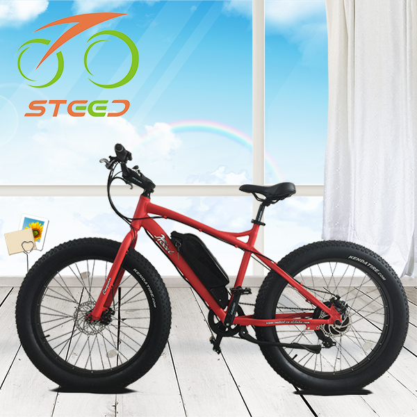 best performance dubai electric bicycle accessories bike for sale high speed