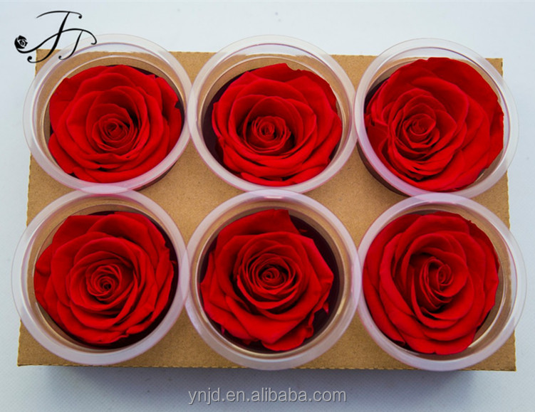 Grade A 5-6cm Preserved Roses for Wedding Decoration