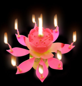 Opening Lotus Flower Candle Fireworks Wholesale Music Birthday