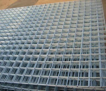 Hot!  Hot!  Galvanized welded wire mesh for sale