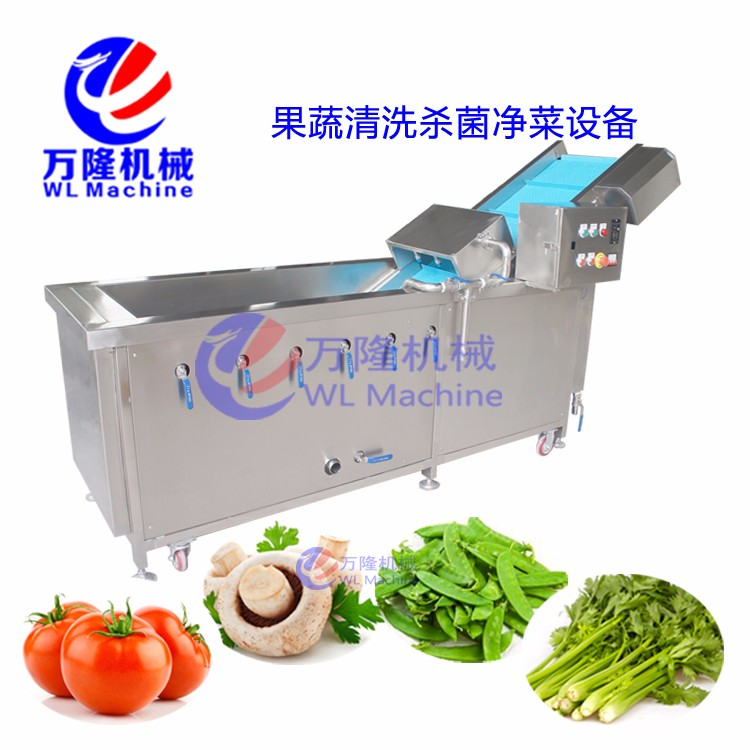 spraying type water saving leafyvegetablewasher / papaya blanching machine / bubble cleaning machine