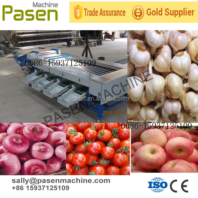 High Capacity Onion Tomato Sorting Machine / Fruit Sorting Machine ...