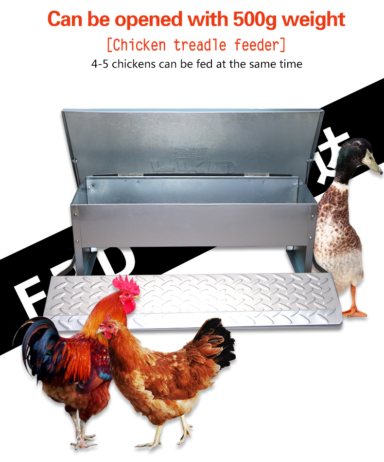 FRD New type treadle feeder/automatic chicken feeder
