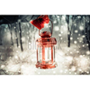 outdoor led christmas lights decoration
