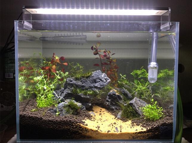 Professionnel 20 Aquarium Led Lumière D'aquarium D'usine 60 Cm Chihiros Lampe Lumière Lumière Buy aquarium Aqua plante hQBtsCrdxo