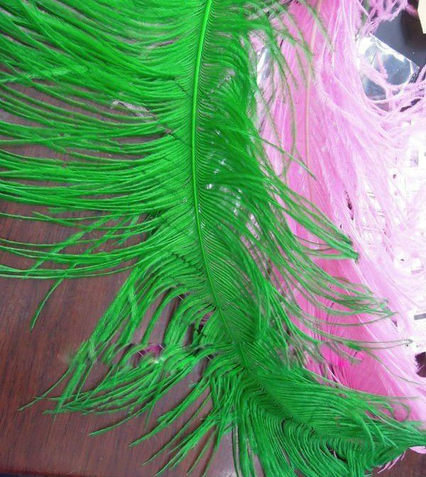 high quality  Ostrich Feather