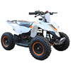Factory Outlets 2 Stroke 49cc 4-wheel Mini ATV For Kids
