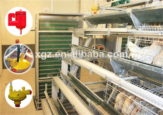 prefab full automatic chicken layer hen house