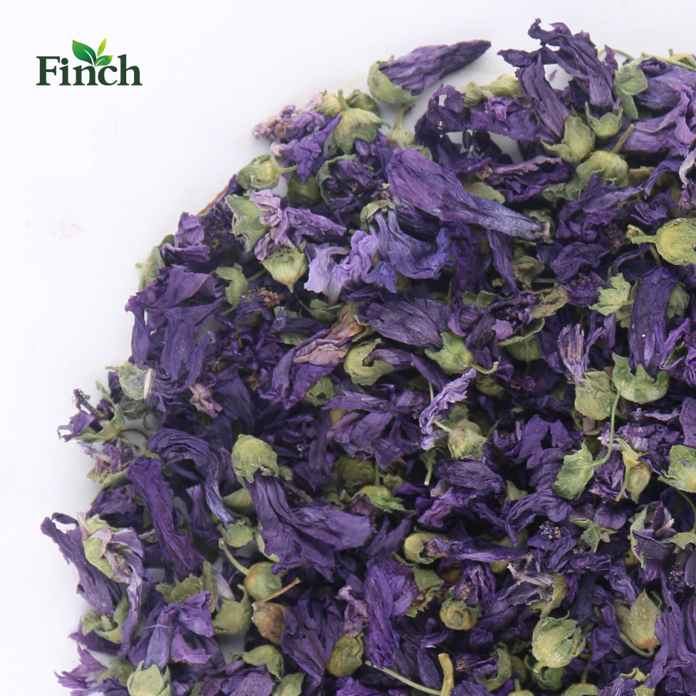 Finch New Arrival <strong>Health</strong> Herbal Tea Dry Violet Flower
