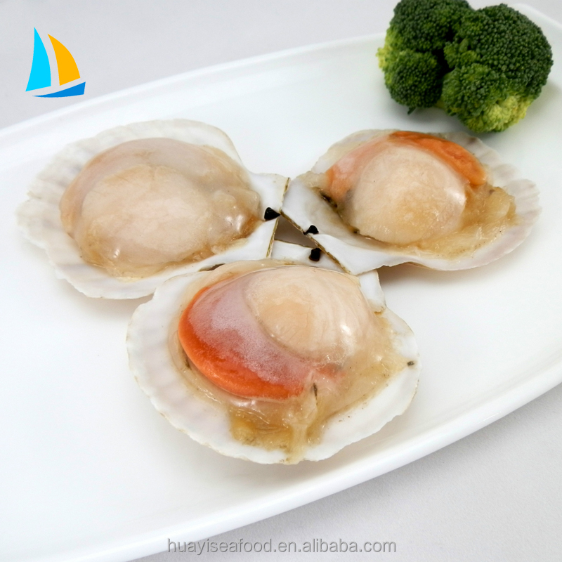 Frozen half shell scallop with roe on
