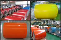 Matt Prepainted Ppgi, Prepainted Iron Steel Sheet Color Coated Steel Coils