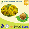 Best price of Arnica P.E. 10:1 Arnica Extract