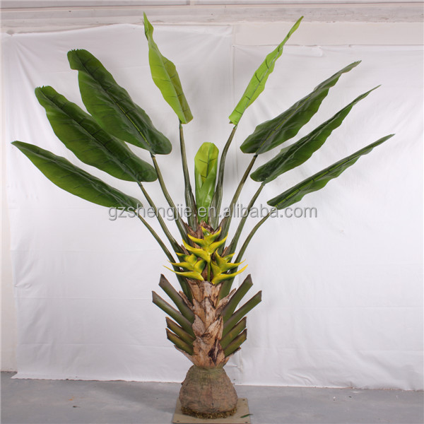 Awesome Indoor Banana Plant Contemporary - Interior Design Ideas ...
