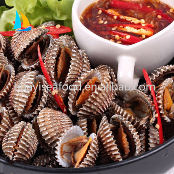 Chinese Dandong Frozen Ark Shell Meat And Blood Clam For Sale - Buy Frozen  Top Shell Meat,Top Shell Meat,Frozen Cooked Blood Clam Product on