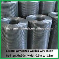 1/4 inch galvanized welded wire mesh(Manufacturer Since 1998)