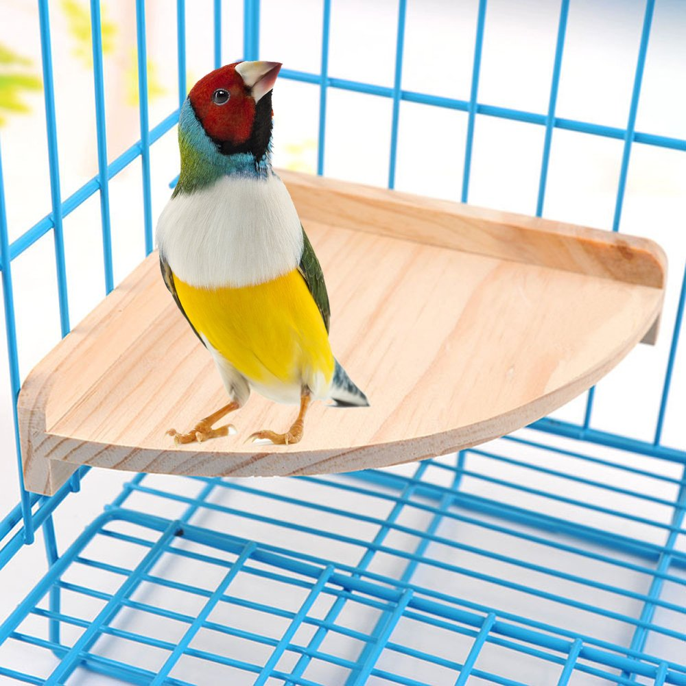 Mrli Pet Bird Perch Platform Stand Wood for Small Animals Parrot Parakeet Conure Cockatiel Budgie Gerbil Rat Mouse Chinchilla Hamster Cage Accessories Exercise Toys Sector