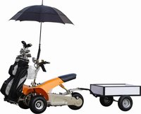Buggy for Sale Golf Kart Powered Electric Golf Cart Folding Electric Golf Cart with Bag Holder and Umbrella (SX-E0906-3A)