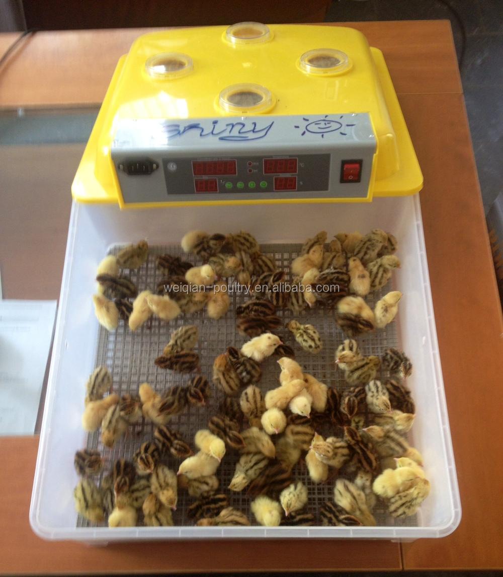 48 egg incubator price mini egg incubator for chicken egg