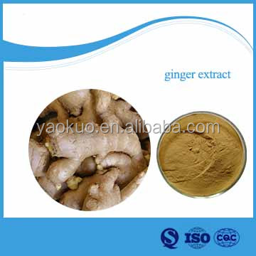 Natural Ginger Extract Powder(water Soluble )