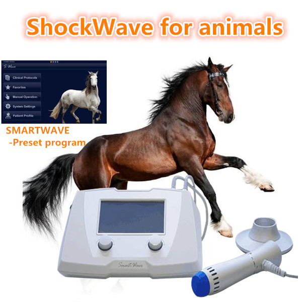 Animal shockwave dispositivo para el alivio del dolor pet hospital uso