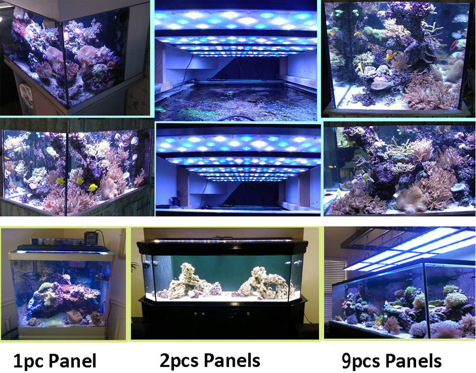 Dsuny Remote Programmable 90w Coral Led Light For Reef Aquariums ...