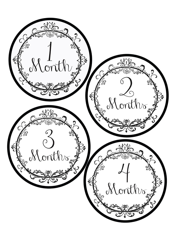 Vintage Monthly Onesie Stickers - Baby Photo Prop - Newborn Sticker - Bodysuit Stickers
