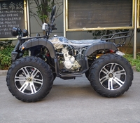 Factory Adult ATV 800cc 4x4