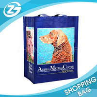 Customized Pet Store Promotional PP Woven Shopping Bag